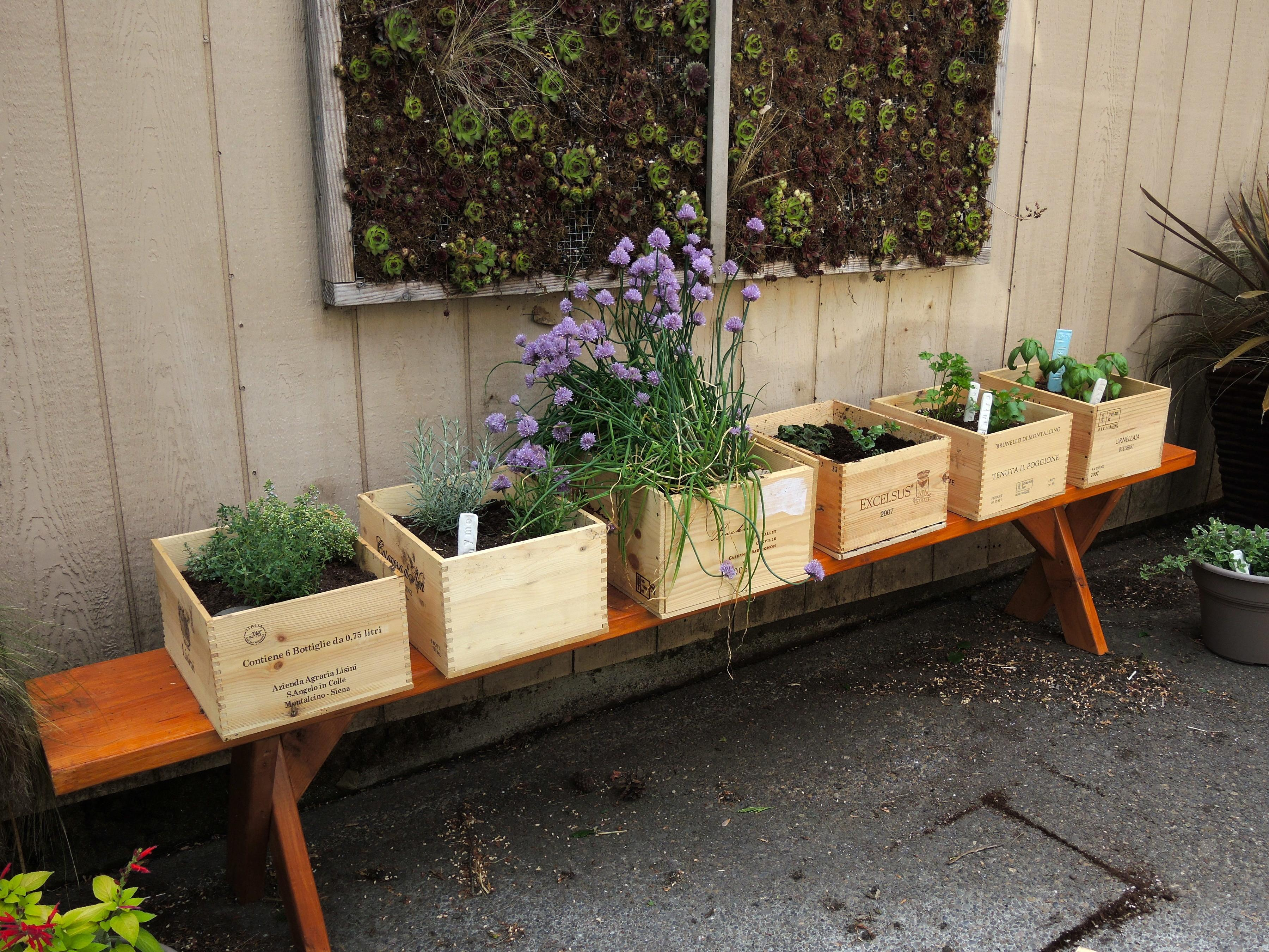 Wine Boxes Herb Garden Blueberry Hill Crafting
