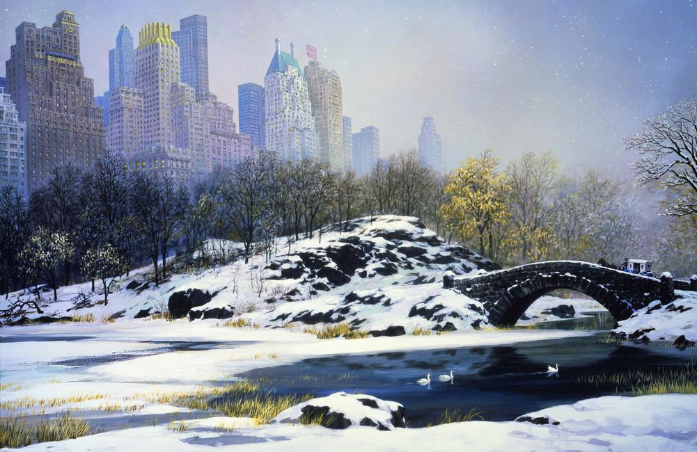 Winter Central Park Wall Mural