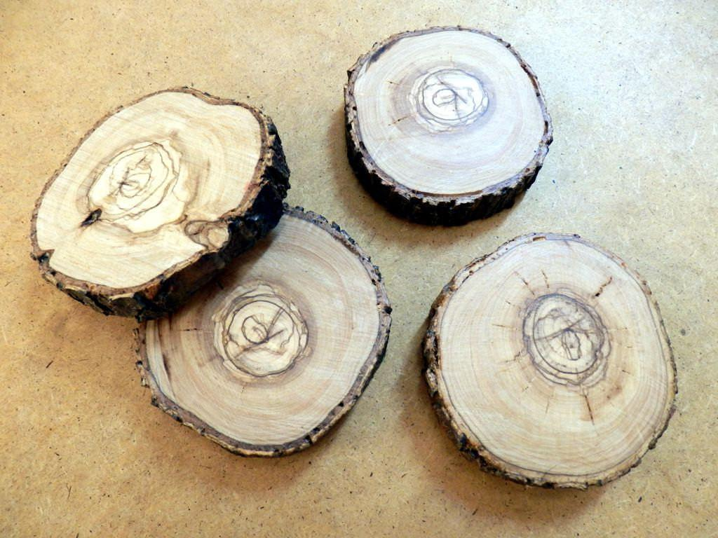 Wooden Coasters Tree Trunk Slices Rustic Home Decor