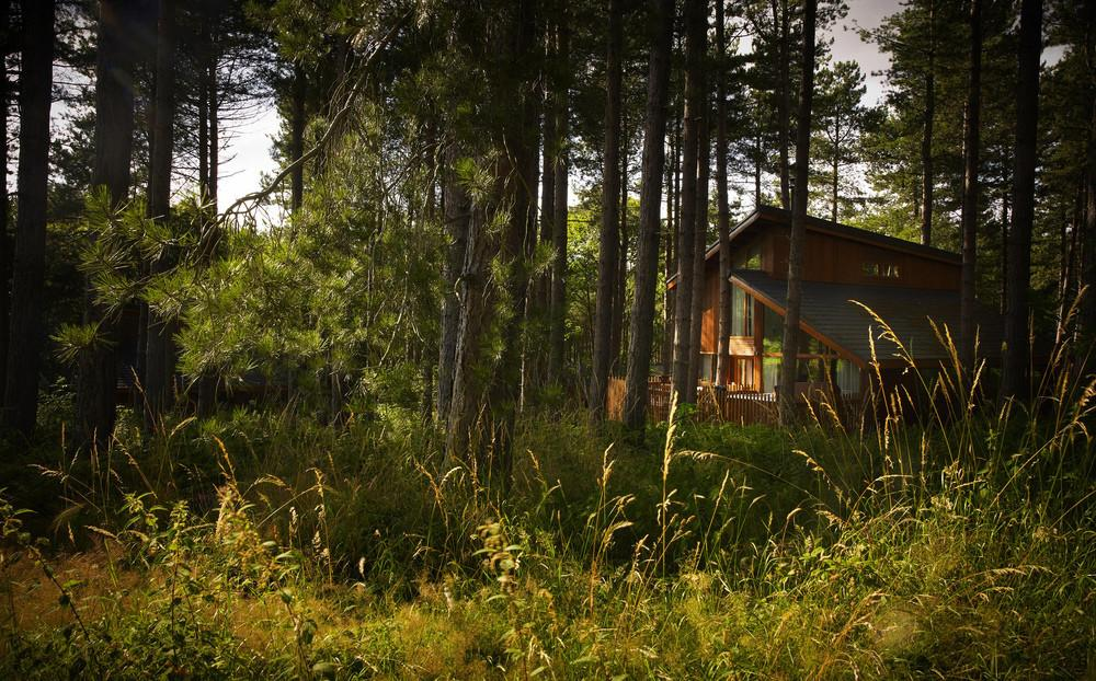 Woodland Cabins Lodges Very Best Selection