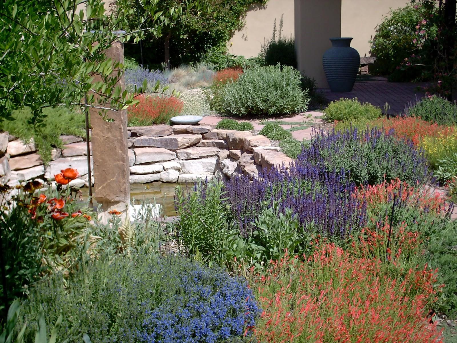 Xeriscape Zeroscape Native Tree Landscaping