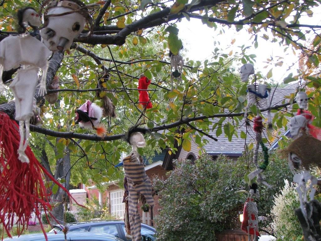 Yard Halloween Decorations Ideas Magment