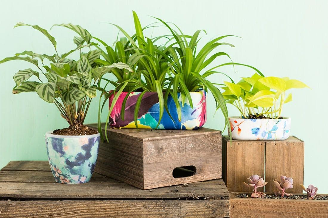 Your Planters Spring Anthropologie Hack
